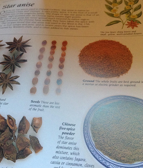 Essential Oil Uses Star Anise